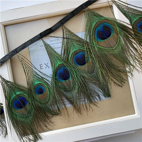 Перья павлина натуральные на атласной ленте